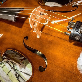 Violin Repair - Columbus, OH